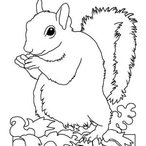 download online coloring pages for free part 57