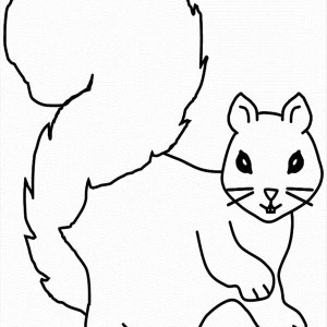 squirrel coloring page for kids