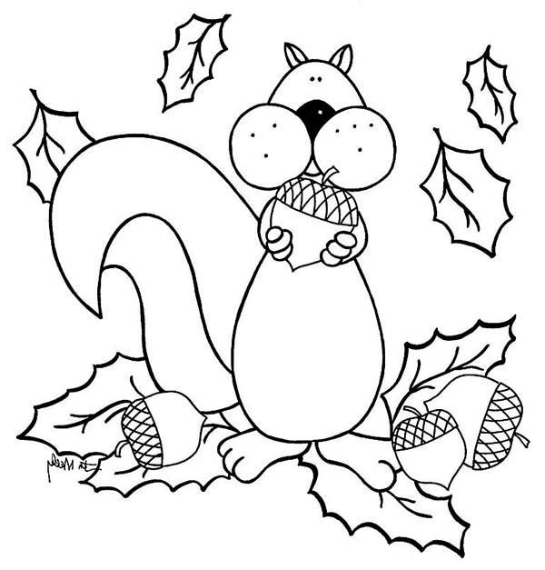 squirrel love to eat acorn coloring page
