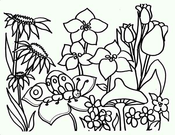 all flower are blooming on springtime coloring page all flower