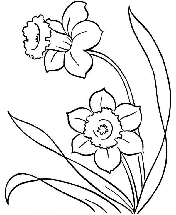 Blooming Flower on Springtime Coloring Page Download Print