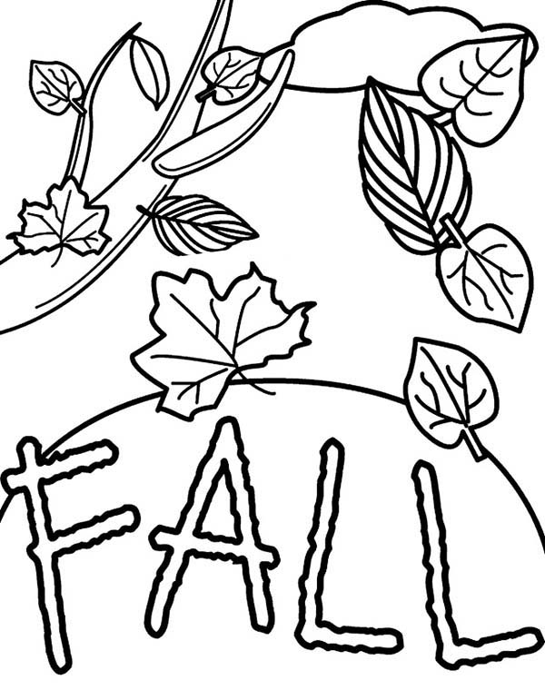 tree with leaves coloring 82 coloring pages for leaves printable coloring pages