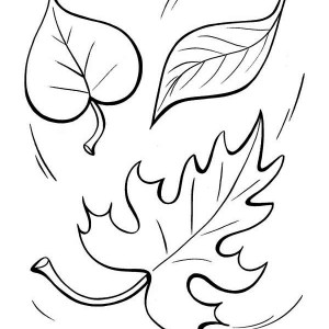 autumn leaf to the ground coloring page - Leaves Coloring Pages