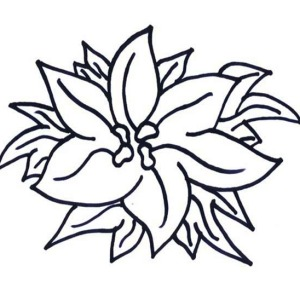 New Years Eve Celebration with Poinsettia Flower Coloring Page