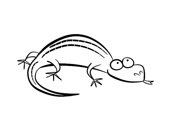 cartoon lizard coloring pages - photo#1