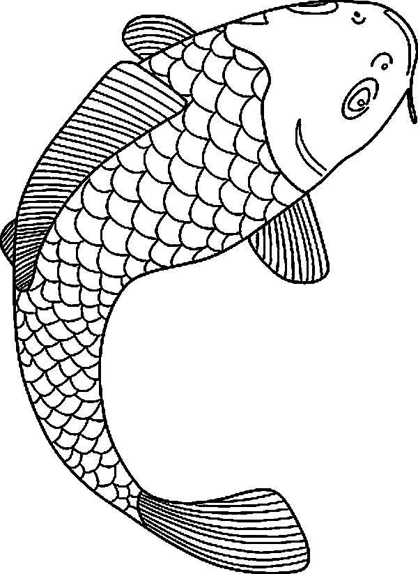 koi fish drawing koi fish coloring pages drawing koi fish coloring pagesfull size image - Fishing Coloring Pages