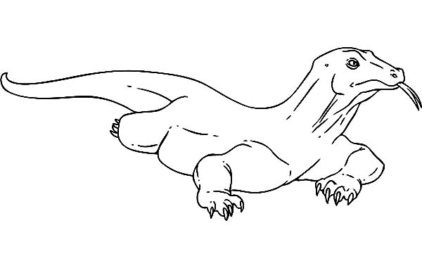 Drawing Komodo Dragon Coloring Pages
