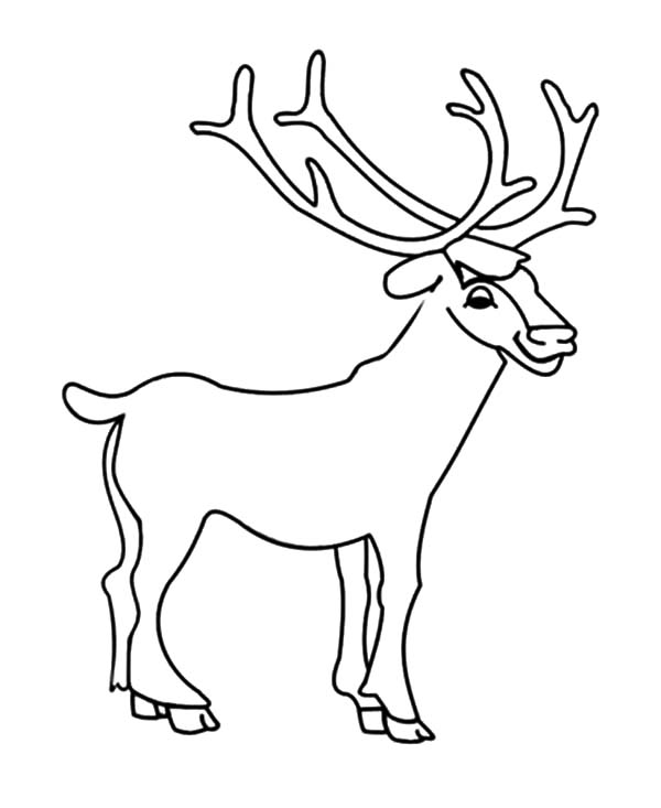 Elk by the Mountain Coloring Pages Elk by the Mountain Coloring