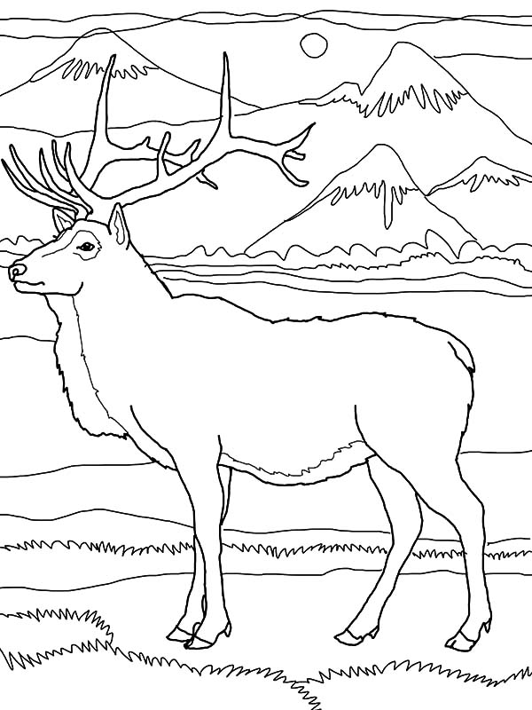 elk by the mountain coloring pages - Mountain Coloring Page
