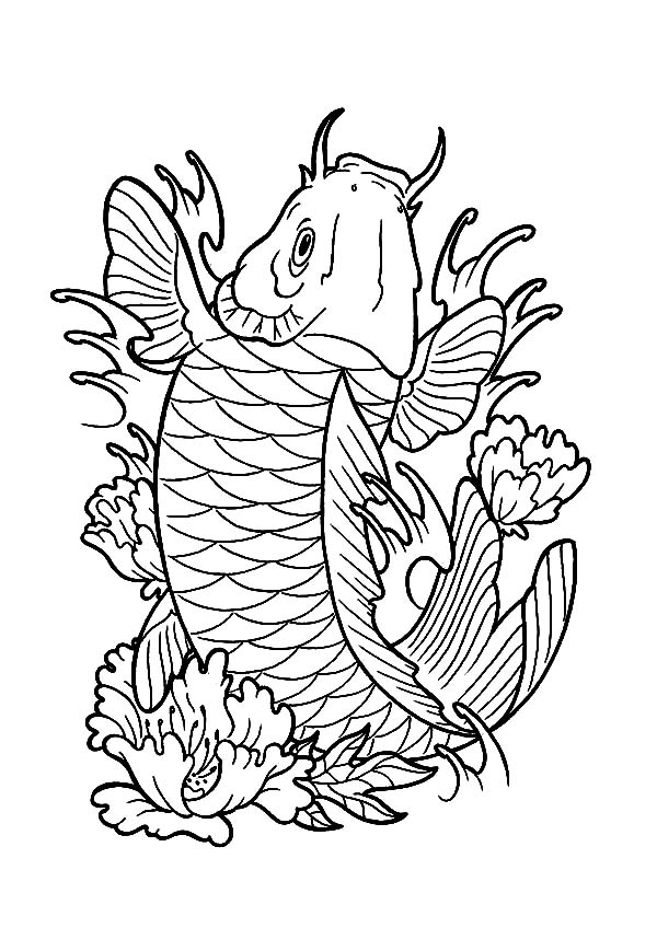 Expensive Koi Fish Coloring Pages Expensive Koi Fish Coloring