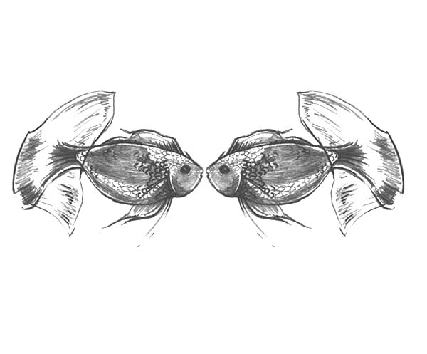 Gold Fish Kissing Coloring Pages