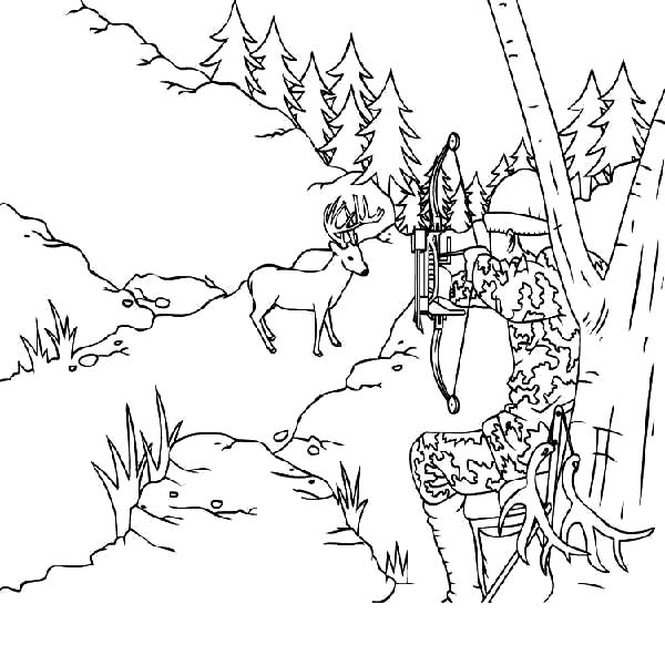 Elk Hunter Aim His Arrow To An Coloring Pages