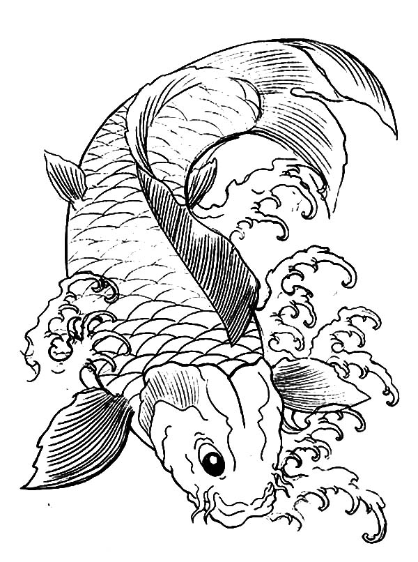 japanese koi fish coloring pages - Koi Fish Coloring Pages