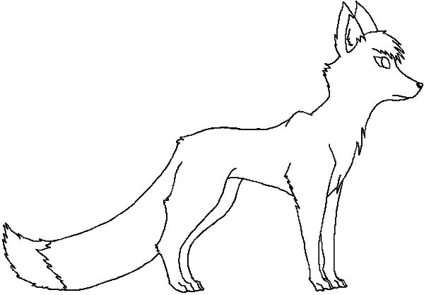Kit Fox Watching Prey Coloring Pages