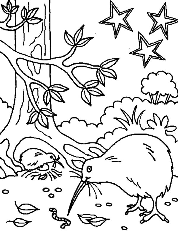 Kiwi Bird Favorite Meal Coloring Pages