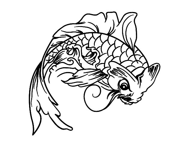 Koi Fish Look Angry Coloring Pages Download Print Online