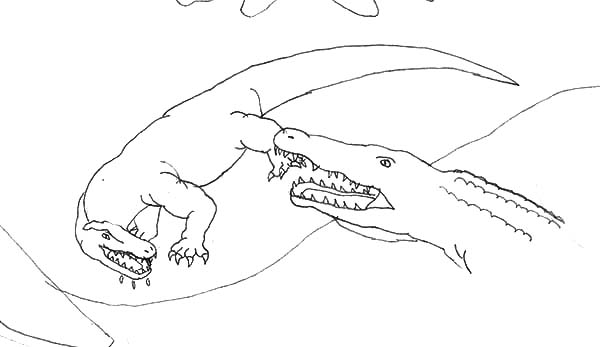 Komodo Dragon Attacked By Crocodile Coloring Pages
