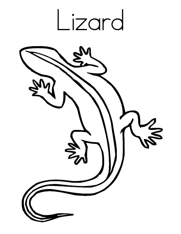 L is for Lizard Coloring Pages Download Print Online Coloring