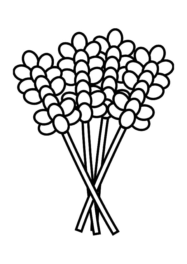 lavender flower coloring pages for kids