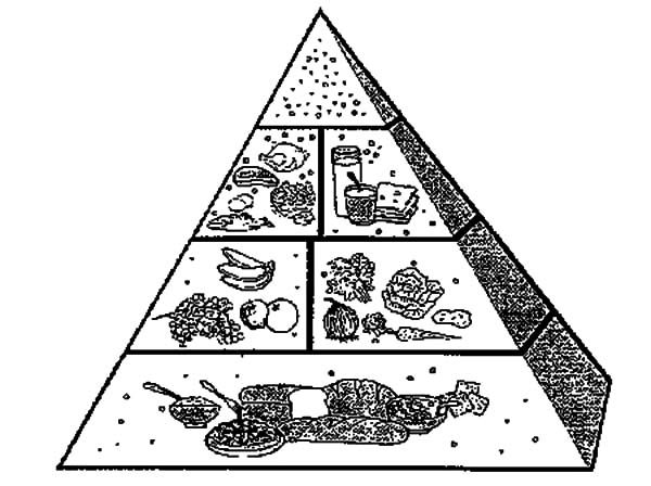 Food Pyramid Picture Of Coloring Pages