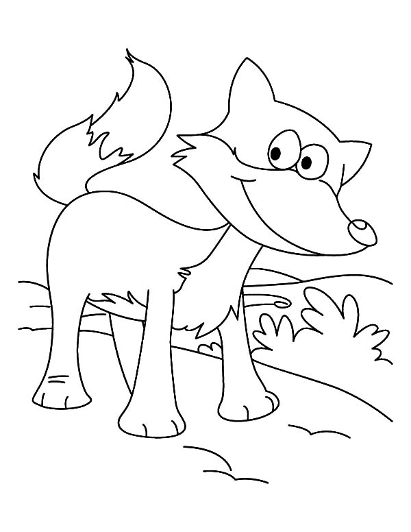 Kit fox coloring pages coloring pages for Template of a fox