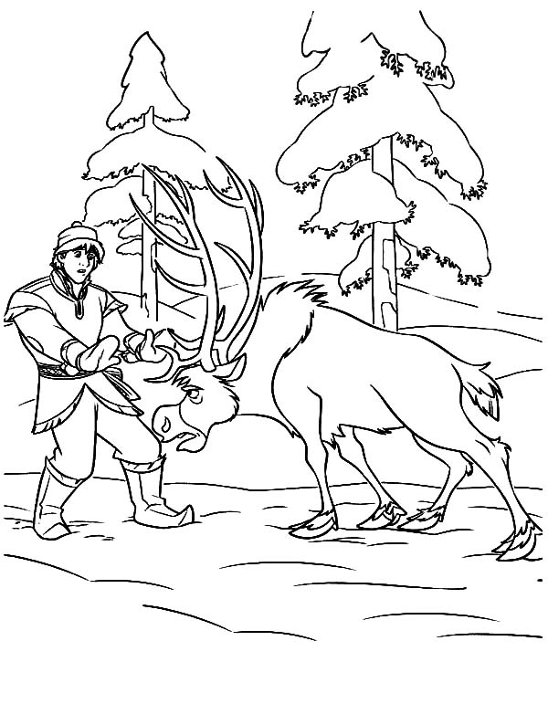 Realistic seahorse free sea animals coloring page for Sven coloring pages