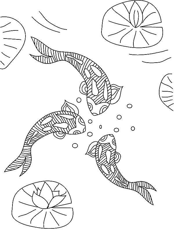 Free koi pond coloring pages for Koi pond color