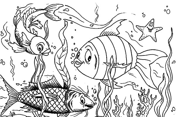 koi fish fish coloring pages kids fish coloring pages kidsfull size image