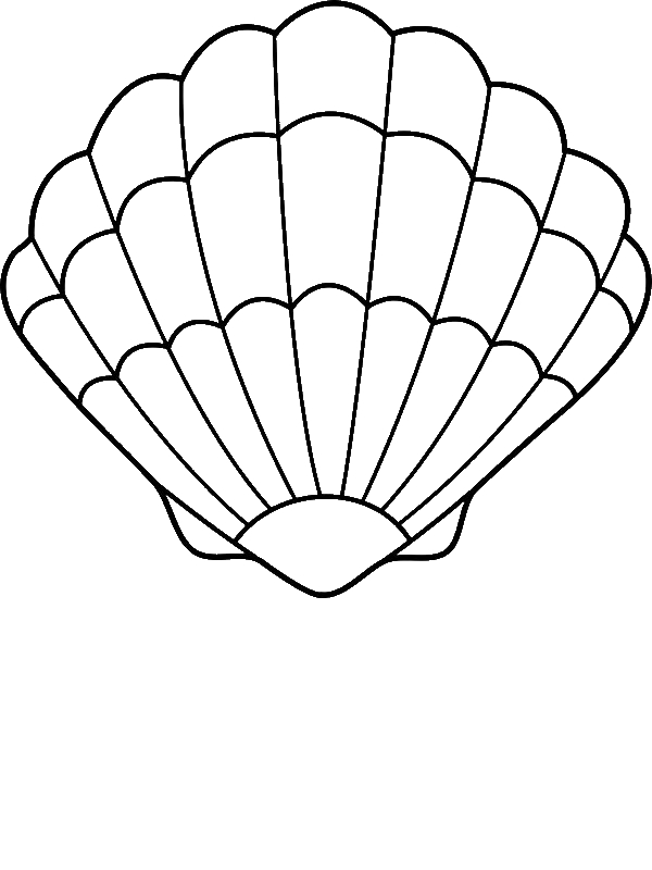 Free Scallop Coloring Pages