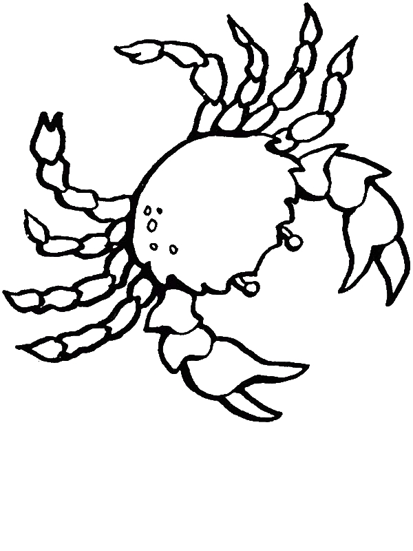 Free Realistic Sea Crab Animals Coloring Page By 9 Years Old Sophia Young