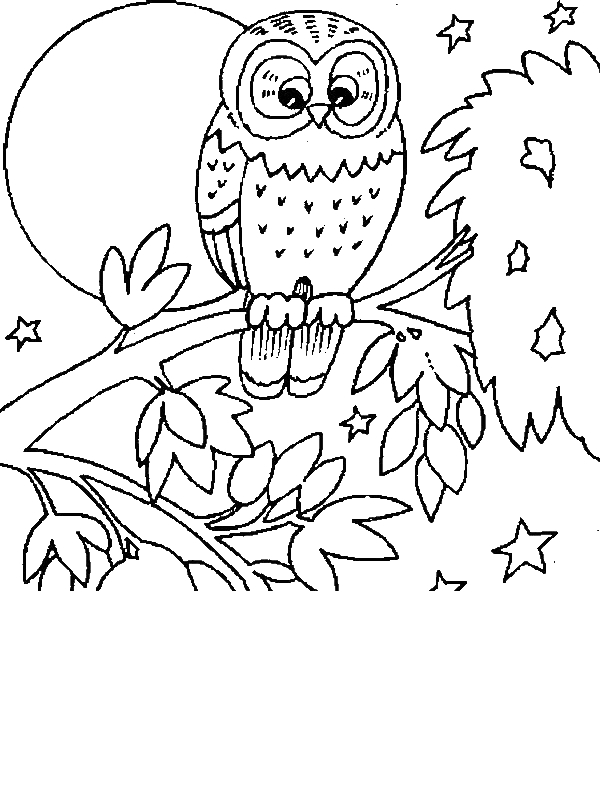 Owl And Large Moon Coloring Page By Years Old