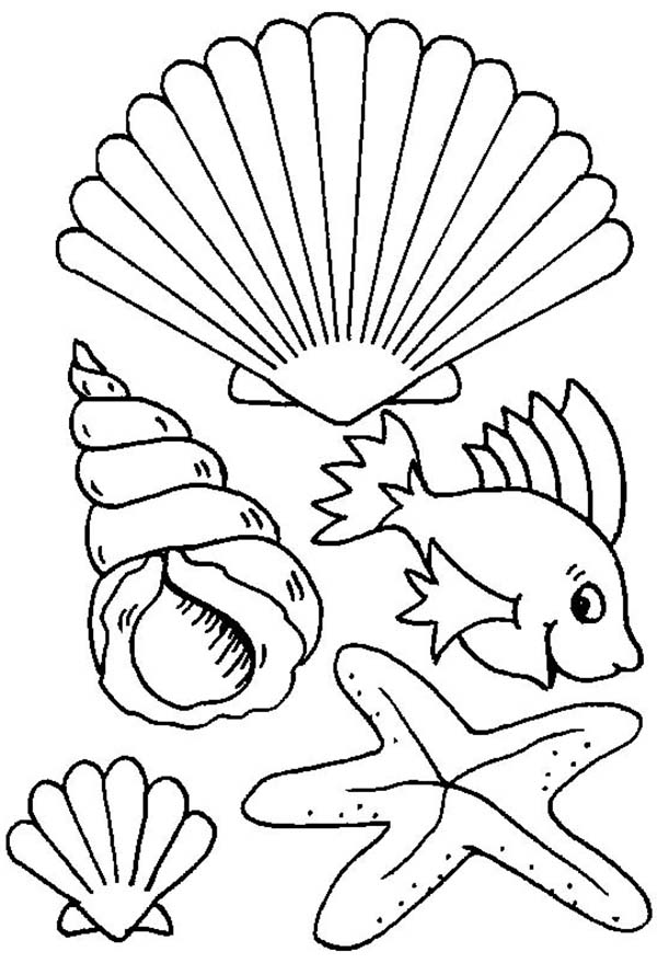Different Types Of Sea Creature And Seashell Coloring Page also Original in addition Spring Flower In The Garden Coloring Page likewise Hand Tree X moreover Sport Coloring Page For Kids. on spring flower coloring sheet