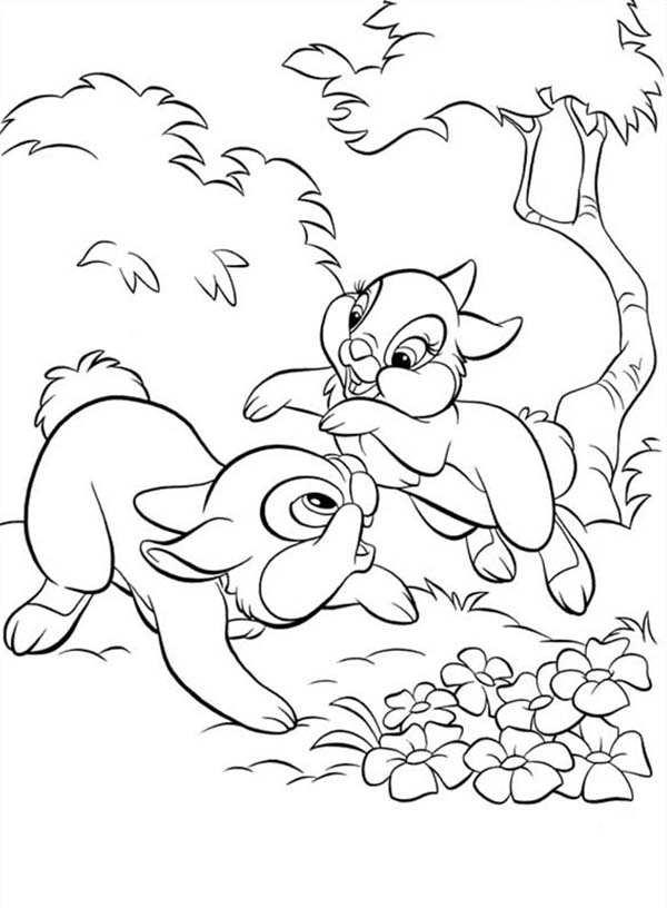 Thumper Playing Around With Miss Bunny Coloring Page