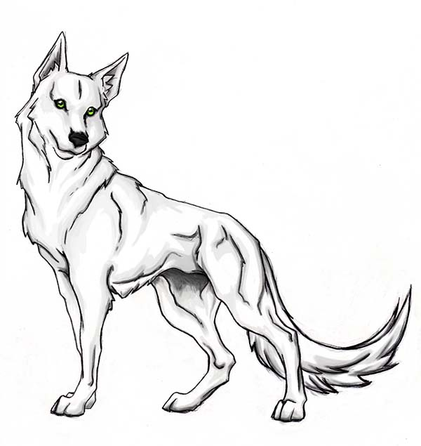 Brave Wolf Coloring Page - Download & Print Online ...
