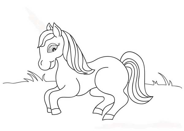 cute little pony in horses coloring page print online
