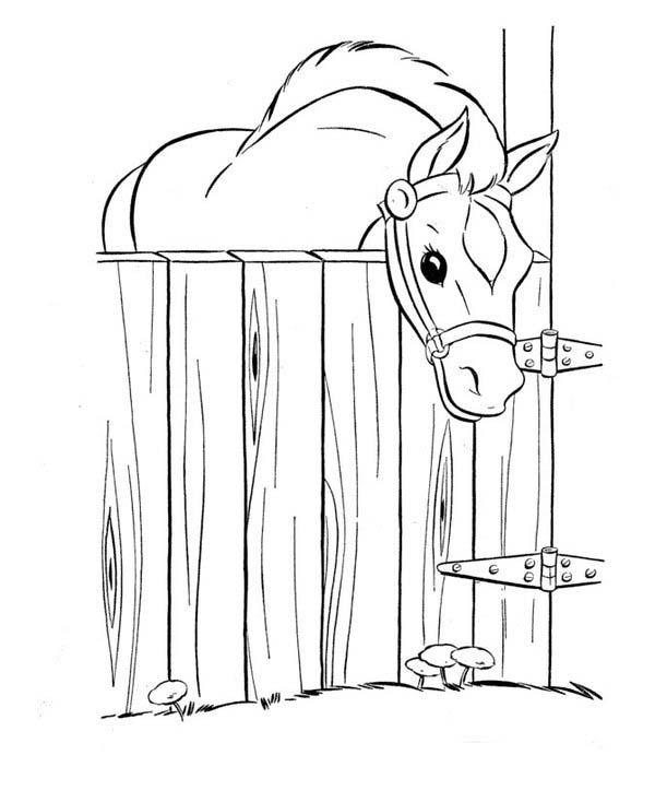Horse In The Stable In Horses Coloring
