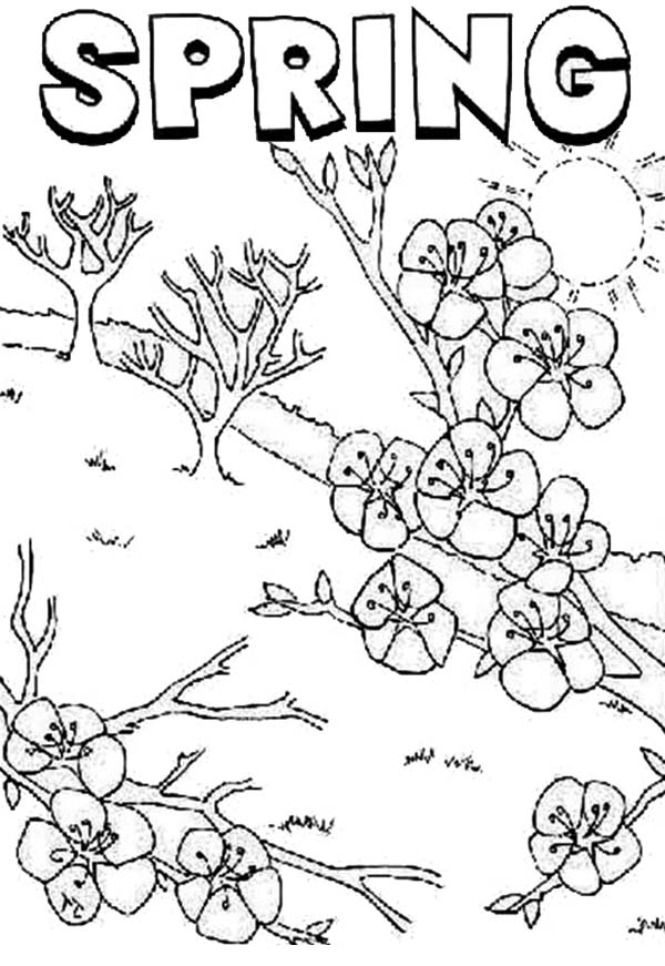 first day of spring coloring pages - free first day of spring coloring pages coloring page