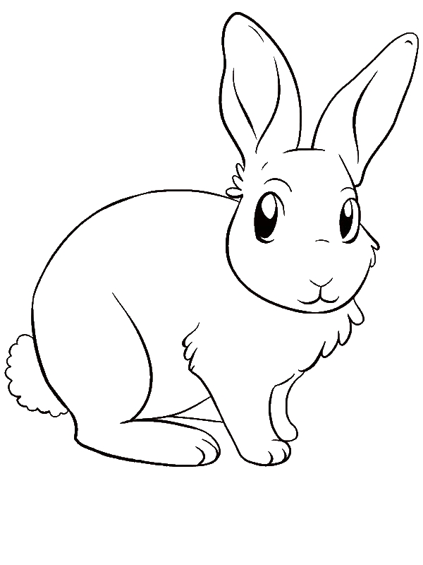 A Lovely Drawing of Little Bunny Coloring Page - Download ...